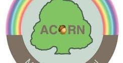 acorn montessori logo